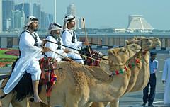 اليوم الوطني 2009 // Qatar national day 1 (qatari star) Tags: road sea people green december walk towers camel 18 2009 doha qatar بدو بدوي قطر الدوحة بحر qatari أبراج تراث كورنيش قطري البدو اليومالوطني شرطي qatarnationalday