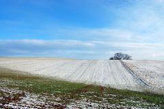 Winterlandschaft (Nordlichter4) Tags: schnee eis rlp rheinlandpfalz winterlandschaft donnersbergkreis weitersweiler drosselfels