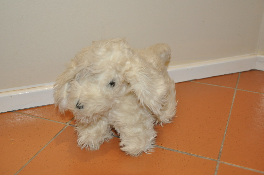 Plush Soft Toy  White Dog