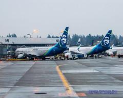 Alaska Airlines Tribute to 100 Years of Boeing (AvgeekJoe) Tags: iflyalaska 737 737700 737790 737900 737900er 737990er alaskaair alaskaairlines america boeing100yearsstrong boeing737 boeing737700 boeing737790 boeing737900 boeing737900er boeing737990er d5300 dslr internationalairport ksea n248ak n619as nikon nikond5300 seatac seatacairport seatacinternational seattle seattletacomainternational seattletacomainternationalairport usa washington washingtonstate aircraft airplane airport aviation jetliner plane