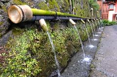 Wakutamaike natural water spring (T.Machi) Tags: water spring shrine wakutamaike fujinomiya sengentaisha japan shinto drink moss green bamboo fujifilm xf1