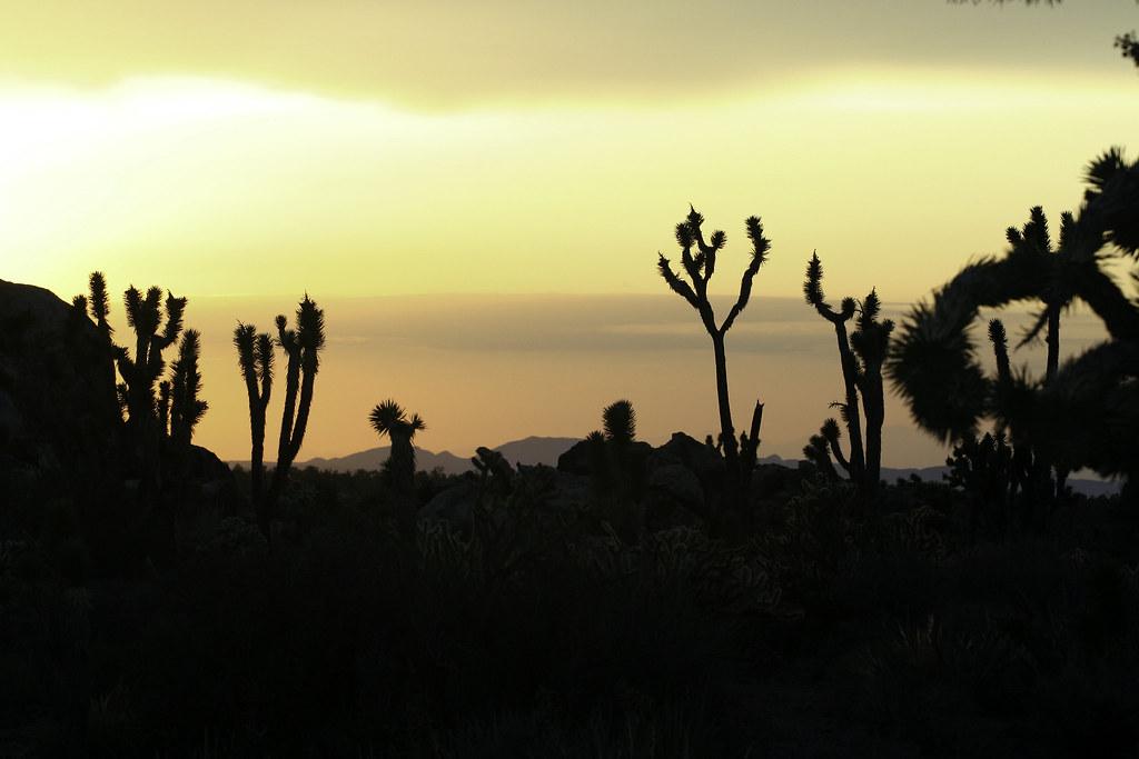 cima sunset 6