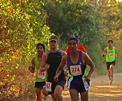 Older and Young Runners (Rennett Stowe) Tags: trees race competition running runners 300 274 competitors racenumbers tryinghard crosscountryrun crosscountryrace runnersnumbers inthelead longdistancerace doingyourbest olderrunner timedrace amateuratheletes runninginfall amateurrunningevents communityrunningevents runningamongtrees givingyourall olderandyoungrunners olderathelete oldermaleathelete atheletesofdifferentages thebeautyofrunning oldermalerunner beautifulcrosscountryrun olderandyoungercompetitors differentagegroupscompete oldermaninthelead