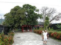 DSCN5847