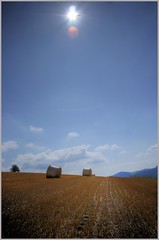After harvest (grundi1) Tags: farm sony landwirtschaft harvest straw 300 alpha hdr stroh ernte welt agrar hollenthon bucklige