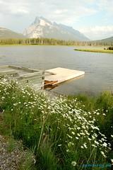 Dock on Vermilion Lakes (summeryus) Tags: mountain lake canada jasper rocky canadian alberta banff vermilion rundle