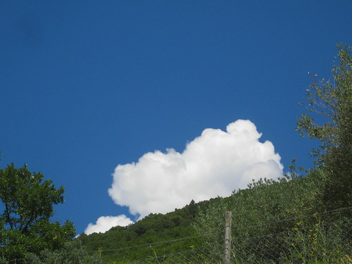 unreasonably white cloud