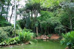 IMG_7964 (dantasdesign) Tags: brazil brasil sãopaulo zoológico paulo são cidades sopaulo zoolgico