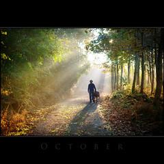 October (Tony Murphy) Tags: morning autumn ireland october sunbeams boyle roscommon cornameeltha explored191009p7