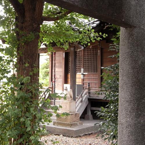 The Hananoki Inari Shrine 01
