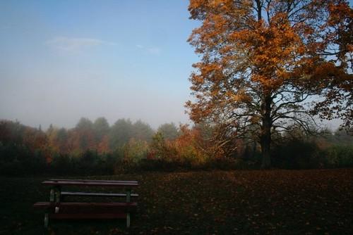 cabin fall 2009