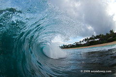 A tubing wave, against the sunrise at Kammies. (Sean Davey Photography) Tags: pictures blue usa green nature contrast hawaii amazing energy colorful power natural oahu shoreline clarity wave clean clear alternativeenergy shore northshore dreamy curl seethrough aquatic transparent lucid crystalclear renewableenergy greenenergy greenpower translucence lucidity oceanwaves amazingnature seawave alternativepower waterocean oceanswell seawaves awesomenature h30 northshoreoahu surferswave endlessenergy oceanpower renewablepower seaswell majesticnature incrediblenature greenandclean wavesofthesea curlingwave wavesenergy seawaveenergy oceanwavepower oceanenergy oceanwaveenergy seapowermarine oceanwavepictures energyfromtheocean oceanenergyresources wavesoftheoceanwave endlesspower