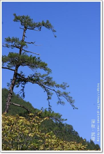 20091030_WuLingChingJing_0409.JPG f