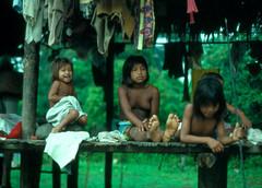 local children in rain forest