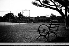 No match, no fans... (FábioFutigami) Tags: trees light red sky panorama sun sunlight plant flores flower color colour tree green art love nature water clouds photoshop canon garden landscape landscapes leaf spring heaven poetry colours darkness rice spirit magic bricks natur vivid natura seeds flame fantasy zen soul árbol mystical poems universe emotions arbre träd pictureperfect watcher fotográfico moln 500d supershot llovemypic t1i flickrcomfabiofutigami fábiofutigami