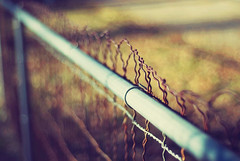 Fence-keh (Simplymichelle) Tags: california old mountains cold fall beautiful metal forest 50mm wire woods december bokeh georgetown 18 2009 freshvintage vintageset actionsandtexturesbymichellenicole prettyvintage