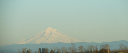 Mt. Hood from my car