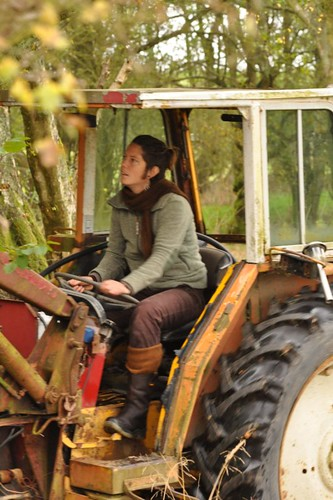 rose-tractor-mellowcroft