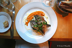 Plated Sea Bream (FreckledPast) Tags: ireland irish food fish restaurant dining christmasdinner corkcity seabream irishfood republicofireland christmasmenu seabreem fennsquay evinokeeffe
