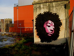 roof top fro 09 (asboluv) Tags: morning sunshine early stencil asbo afrogirl grafikwarfare asboluv