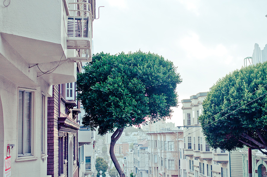 The Hilly Streets of San Francisco