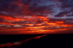 Red River (PelicanPete) Tags: sunset cloudscape calm serene nature beauty natural inland hometown florida unitedstates usa floridaeverglades riverofgrass open dramatic composition winter2017 22117 southflorida broward coralspringsflorida outdoor sky horizon colorful wintersunset dusk smooth water brown stripes quiet landscapephotography artisticsunsetphotography riverscapephotography expansivespace bigsky redriver river grass peaceful firelight litup