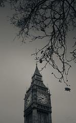 Blurred Ben (Coisroux) Tags: bigben architecture historic monument westminster clocktower parliament london blackandwhite d5500 nikond landmark