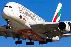 A6-EDG / Emirates / Airbus A380-861 / Barcelona (BCN/LEBL) / 09-02-2017 (ManuelDelAmo) Tags: a6edg emirates airbus a380861 a388 a380 whale whalejet uae185 unitedforwildlife logojet speciallivery specialscheme aviation civilaviation commercialaviation aircraft airplane plane heavy widebody arrival landing runway 25r photography closeup aviationphotography spotting planespotting jetphotos wwwjetphotosnet airport barcelona bcn lebl elprat elpratdellobregat manueldelamo