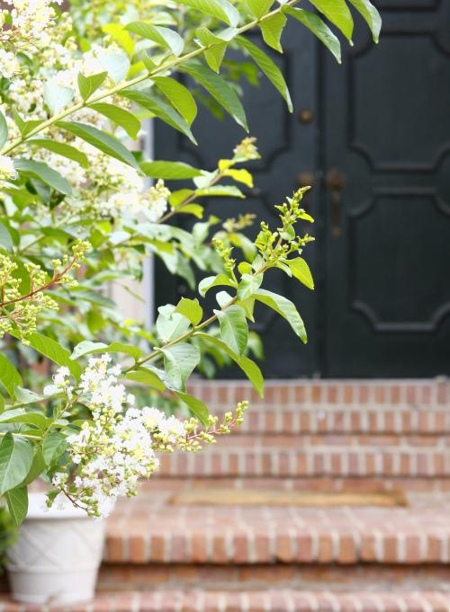 front.door