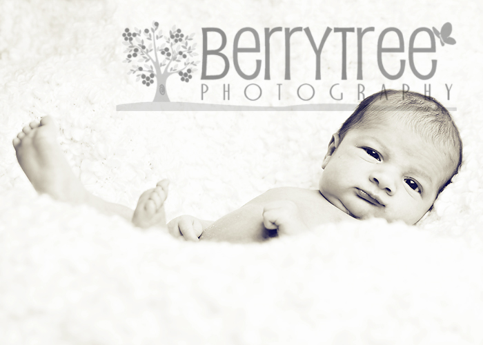3733403931 6535c299a4 o Photography GTG! (yes again...)   BerryTree Photography : Atlanta, GA Photographer