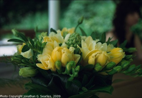 Wedding Flowers, Picture 2, Sychrov, Liberecky Kraj, Bohemia (CZ), 2009