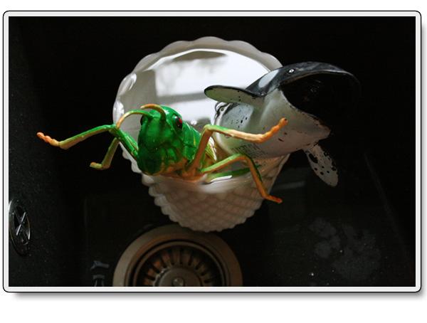 Gräshoppa-och-späckhuggare