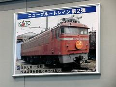 R0010850.JPG