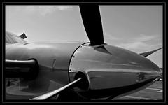 Pilatus PC12 (Aman Iman ) Tags: blackandwhite noiretblanc aircraft aeroplane pilatus pc12 avion aroplane