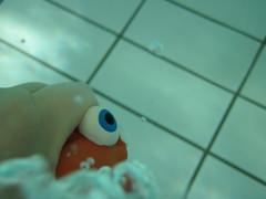Little Fish #7 (Alison et Cedric) Tags: underwater powershot bubble bulle d10 waterquot quotunder