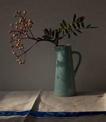 still light (penwren) Tags: light shadow stilllife sunlight berries linen naturallight jug pitcher crease naturemorte sorbus vintagelinen penelopefewster