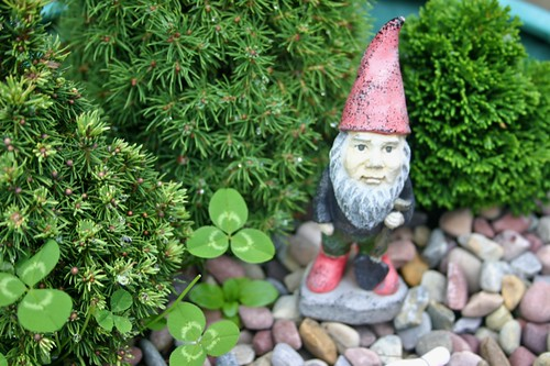 My gnome grew weeds