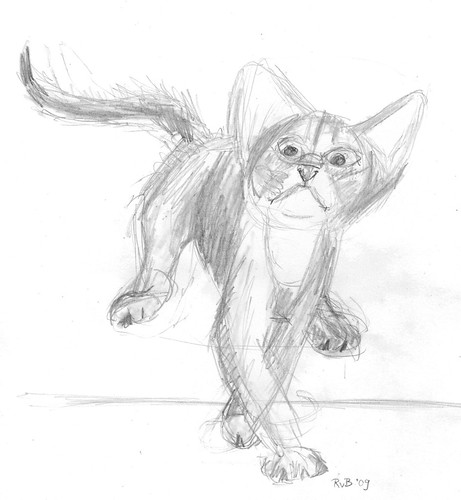 Drawing kittens, part 3