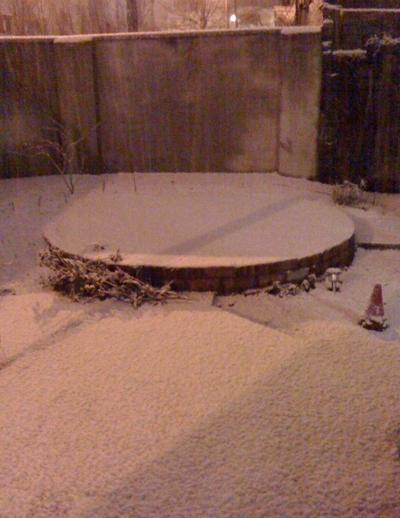 Snowy garden at midnight on 31 December 2009
