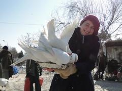 DSC08895 (huxley1312) Tags: afghanistan sharif mazare