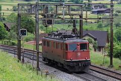 SBB Lokomotive Ae 6/6 11437 Stadt Basel ( Hersteller SLM Nr. 4261 - Baujahr 1957 ) ob Erstfeld auf der Gotthard Nordrampe der Gotthardbahn im Kanton Uri in der Schweiz (chrchr_75) Tags: hurni christoph schweiz suisse switzerland svizzera suissa swiss chrchr chrchr75 chrigu chriguhurni 1105 mai 2011 albumbahnenderschweiz zug train juna zoug trainen tog tren поезд lokomotive паровоз locomotora lok lokomotiv locomotief locomotiva locomotive eisenbahn railway rautatie chemin de fer ferrovia 鉄道 spoorweg железнодорожный centralstation ferroviaria albumbahnenderschweiz2011 ahnenderschweiz2011 sbb cff ffs schweizerische bundesbahn bundesbahnen lomomotive eisenban bahn treno albumsbbae66lokomotive chriguhurnibluemailch mai2011 albumzzz201105mai hurni110512