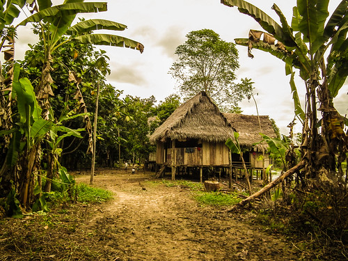 Amazon Village near Iquitos