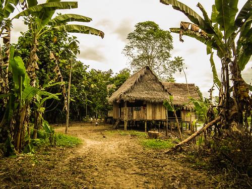 Amazon Village near Iquitos