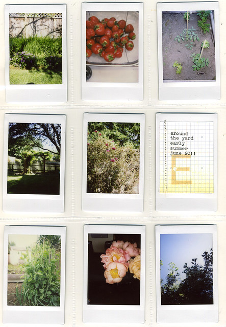 Instax | Early June
