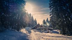 Chalet isolé (fafisavoie) Tags: chalet forêt hiver montagne solein contrejour sunset neige froid