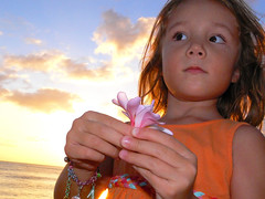 gentle embrace (non-stop fascination) Tags: ocean flowers sunset summer portrait sky sun nature colors look clouds hawaii plumeria radiance warmth present embrace scent