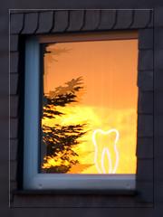 Dentist's sunset window (Glatze mit Kamera) Tags: sunset orange reflection tree window yellow germany sonnenuntergang fenster olympus gelb dentist wuppertal reflexion spiegelung 2009 baum zahnarzt schiefer digitalcameraclub evolte510 torstenhofmann