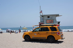 LifeguardMobile