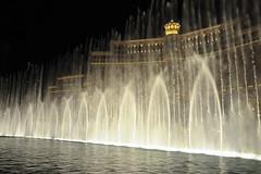 Vegas 1194