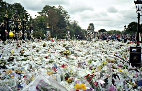 princess diana funeral flowers. Flowers for Princess Diana#39;s